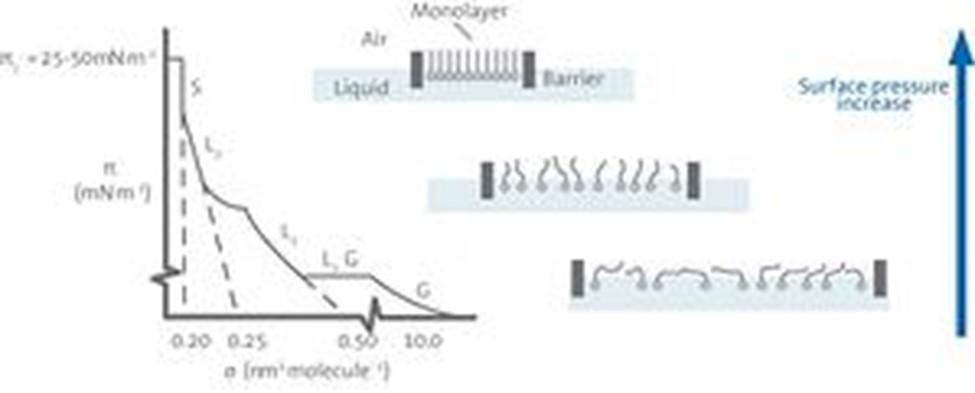 Langmuir膜等温线测量